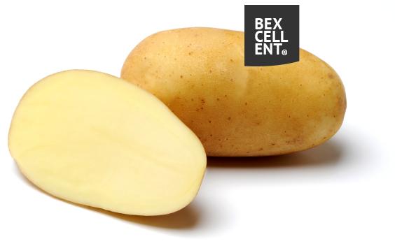 bexellent aardappelen